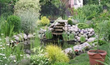 bahce-dekorasyonunuz-icin-sus-havuzu-modelleri-3