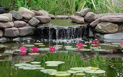 bahce-dekorasyonunuz-icin-sus-havuzu-modelleri-5